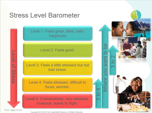 stress barometer defines the 5 levels of stress