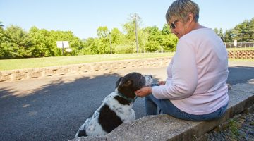 woman sitting outside on a wall with her dog